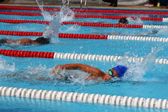 Swimming Freestyle Jersey. The swimming competition stock images