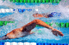 Swimming, freestyle in waterpool Stock Image