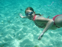 Swimming girl under water. Underwater swimming in the blue sea stock photos