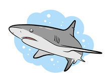 Swimming Grey Shark Vector Cartoon Stock Photo