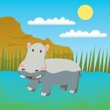 Swimming Hippo Stock Image