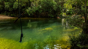 The Swimming Hole. Swimming hole in a tropical rainforest stock images
