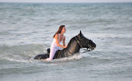 Swimming horse Stock Photos