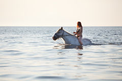 Swimming with horse Stock Photography