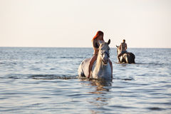 Swimming with horse Stock Photos