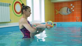 Swimming instructor and infant in swimming pool. Swimming instructor and infant doing exercises in a pool. Prevention of diseases of the musculoskeletal system stock video