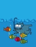 Swimming Kitten Stock Photos
