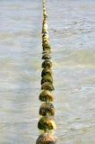 Swimming lane marker buoys Royalty Free Stock Photo