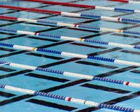 Swimming Lanes. An olympic sized pool with designated lanes royalty free stock photos