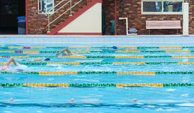 Swimming Laps Outdoor pool. Four people swimming laps at an outdoor pool. Copyspace Stock Photo
