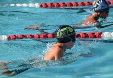 Swimming, Leisure, Swimmer, Medley Swimming royalty free stock photography