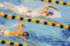 Swimming Meet Royalty Free Stock Photography