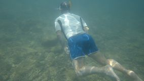 Swimming near the sea floor. A shot of a man swimming near the sea floor. Below the diver are different rocks seating on the ocean floor stock footage