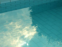 Swimming pool. With tree reflection Royalty Free Stock Photo