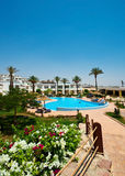 Swimming pool. In Sharm-el Sheik Royalty Free Stock Photos