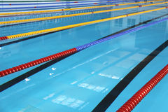 Swimming Pool. Sport. For you design Royalty Free Stock Photos