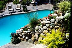 Swimming Pool. Landscape and plant with swimming pool Royalty Free Stock Images
