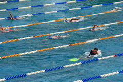 Swimming pool. Swimmers training in a swimming pool Royalty Free Stock Photo
