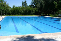 Swimming pool. In summer time Stock Photography