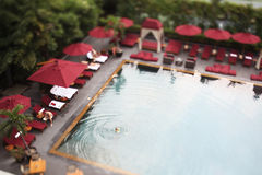 Swimming pool in aerial view. Royalty Free Stock Images