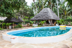 Swimming pool in African Garden Stock Images