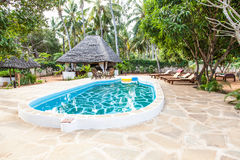 Swimming pool in African Garden Royalty Free Stock Photo