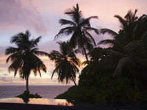 Swimming pool of the Banyan Tree Hotel with Palm Trees at Sunset, Anse Intendance, Mahe`, Seychelles Stock Photo