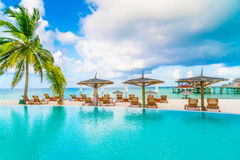Swimming pool bar in tropical Maldives island . Stock Images