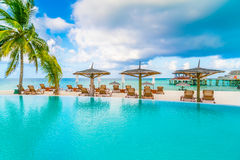 Swimming pool bar in tropical Maldives island . Stock Photography