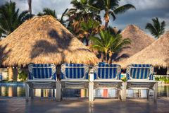 Swimming pool with beach chairs in tropical resort, Dominican Re Royalty Free Stock Images
