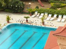 Swimming Pool with Birds Royalty Free Stock Photos
