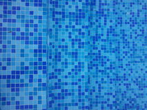Swimming pool. Blue floor tiles Stock Images