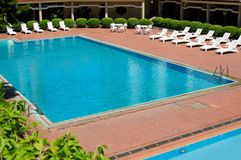 Swimming pool and chaise longues Stock Photos