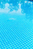 Swimming pool with clear water. Swimming pool with reflection of trees in it Royalty Free Stock Photo