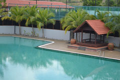 Swimming Pool with coconut tree Stock Photos