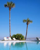 A swimming pool in Daytona Beach, Florida. USA with palm trees Royalty Free Stock Image