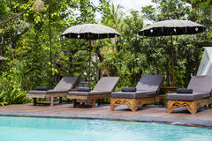 Swimming pool and deck chairs in tropical garden. Island Bali, Ubud, Indonesia Royalty Free Stock Image