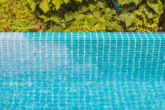 Swimming pool edge with garden background Royalty Free Stock Images