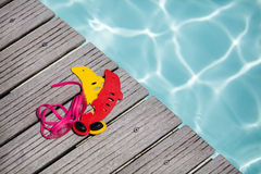 Equipment For Swimming Stock Images Image 12241894