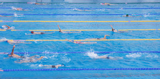 Swimming pool with exercising children Royalty Free Stock Images