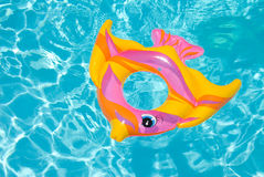 Swimming pool float Royalty Free Stock Photo