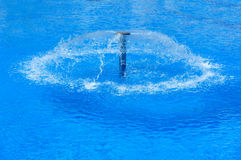 Swimming pool with fountain Stock Photography