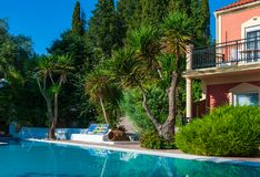 Swimming pool and green platns Stock Image