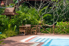 Swimming pool in garden Royalty Free Stock Images