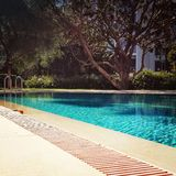 Swimming pool. In the garden royalty free stock photography