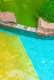 Swimming pool in garden. Stock Images