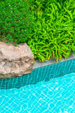 Swimming pool in garden. Stock Photography