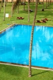The swimming pool and green lawn at luxury hotel Stock Photo