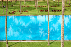The swimming pool and green lawn at luxury hotel Stock Image