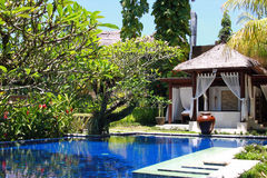 Swimming pool in a hotel, Bali, Ubud Stock Photo